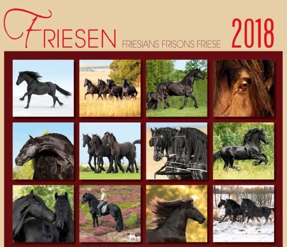 BOISELLE カレンダー2018 Lサイズ Friesian Horse (フリージアンホース)